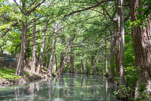 county usa west nature creek texas natural south southern cypress devilsbackbone wimberley hays baldcypress