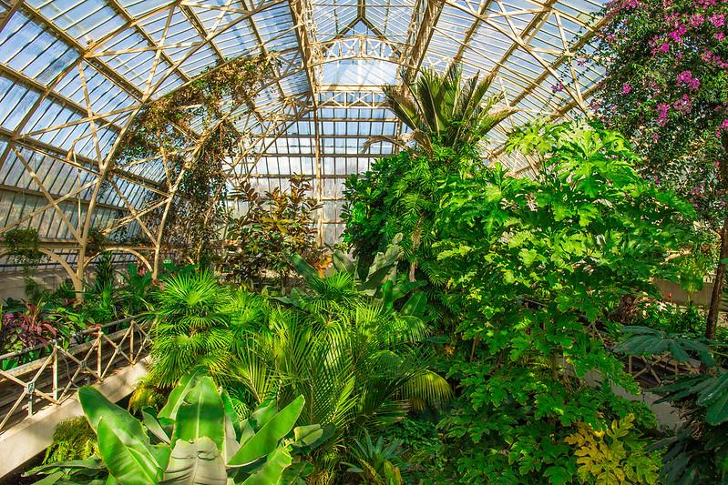Botanical Conservatory_27