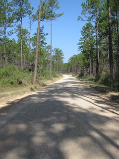 The northern half of John Smith Road is gravel and/or dirt