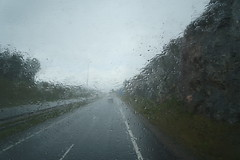 fog(0.0), snow(0.0), freezing(0.0), mist(0.0), sunlight(1.0), rain(1.0), road(1.0), drizzle(1.0), haze(1.0), morning(1.0), infrastructure(1.0),