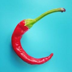 und los geht die chili-ernte :)
