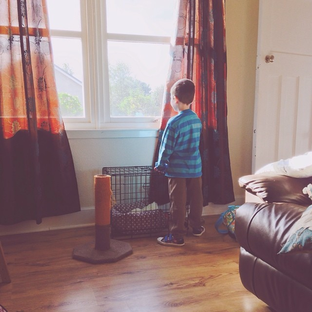Max is waiting patiently for Grandpa to arrive so he can go to his respite day out! #autism #specialneeds #socute #waiting