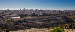 La Vieille ville depuit le Mont des Oliviers
