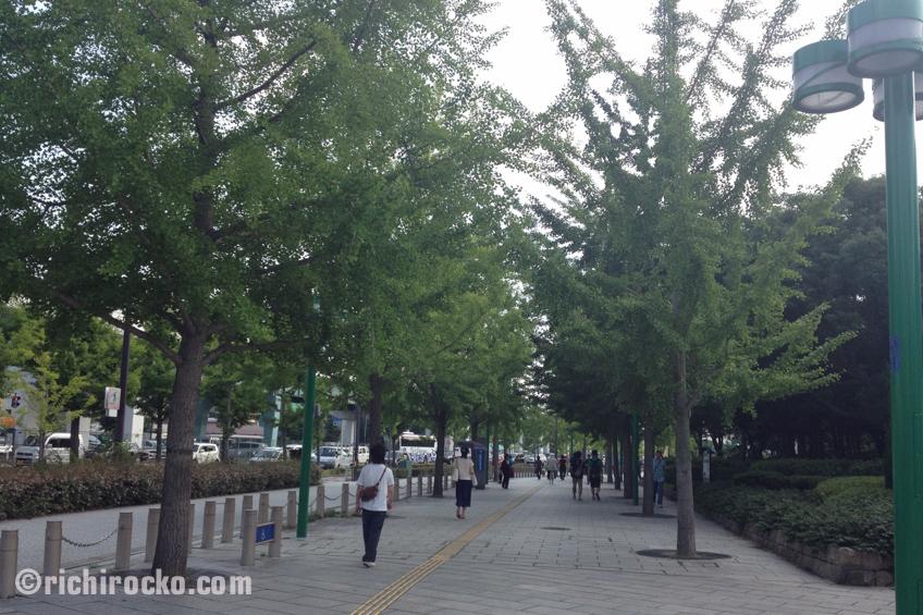 Japan 2014 Post #4