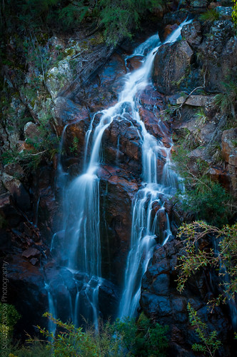 waterfall australia victoria snowymountains countryvictoria wtree buchanvalley wtreefalls