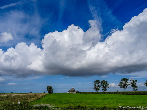 trees sky france green nature clouds landscape montsaintmichel