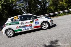 50^ Rally del Friuli Venezia Giulia 2014