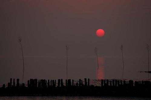 sunset sonnenuntergang sundown tide northsea nordsee mudflats watt priggen 5dmkii waddenseanationalparkoflowersaxony