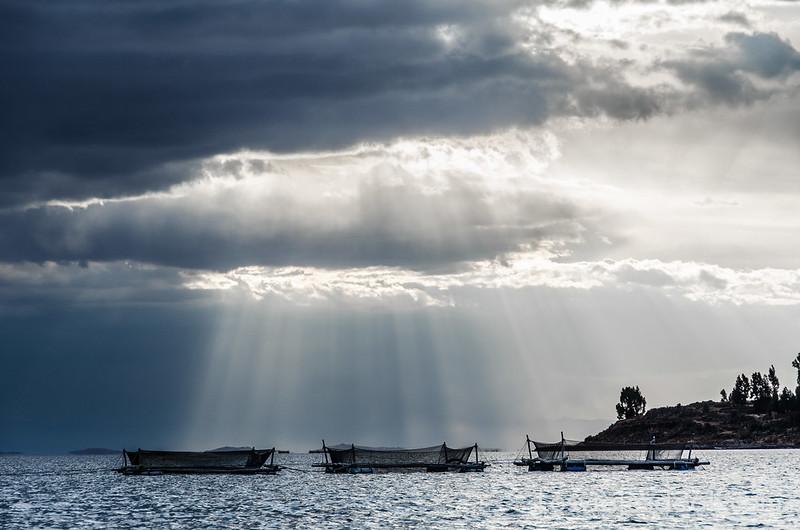 piscifactorías de la Comunidad Llachón en la Península de Capachica