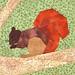 Eichhörnchen 6 x 6 Inches by hohenbrunnerquilterin