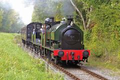 Ribble Steam Railway Gala Sept 2014