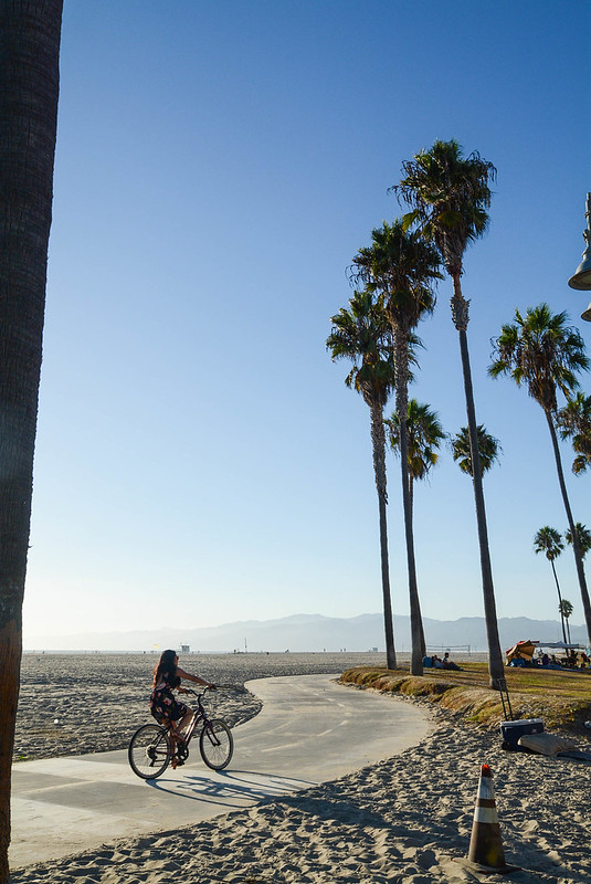 Venice Beach Bicycle