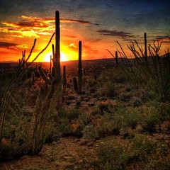 At sunset, hills near Sabino Canyon