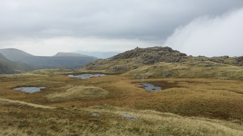 Seathwaite Fell (Wainwright summit) #sh