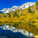 Autumn Colors against Eastern Sierra Mountains by Khun Hans Photography