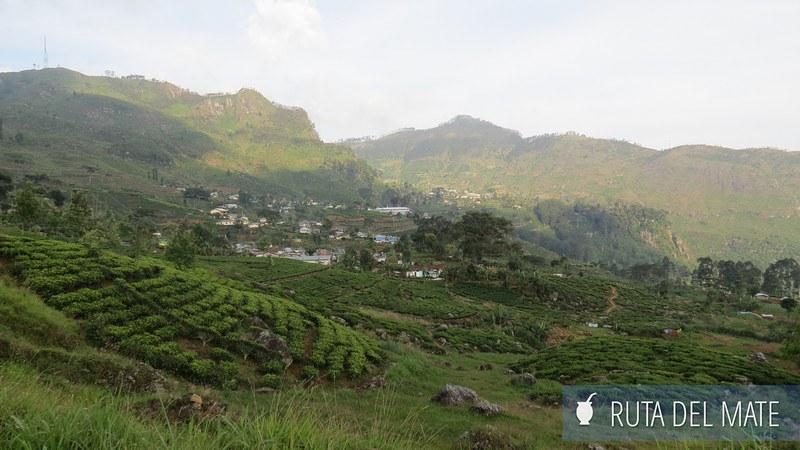 Haputale Sri Lanka (28)