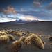 Dawn Mount Ruapehu NZ by angus clyne