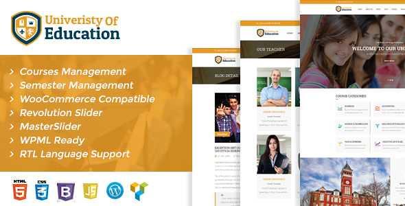 University of Education WordPress Theme free download