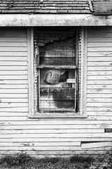 Window of an Abandoned House, Oak Harbor, Washington, Spring 2017