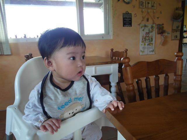 坐在餐椅裡看老闆娘坐早餐的小麋鹿@宜蘭心森林民宿1N