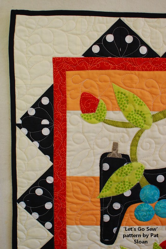 pat sloan lets go sew straight line quilting det 3