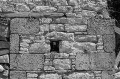 99060109-Halki stone wall