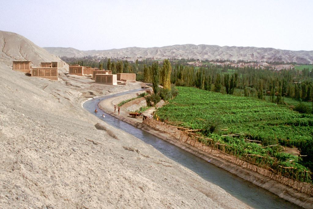 Turpan - Province du Xinjiang - De la vigne dans le désert