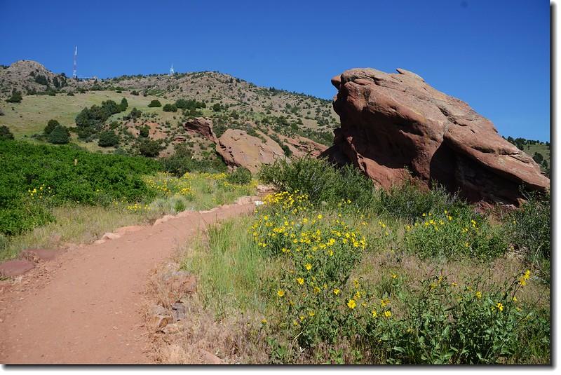 Red Rocks Trail 3