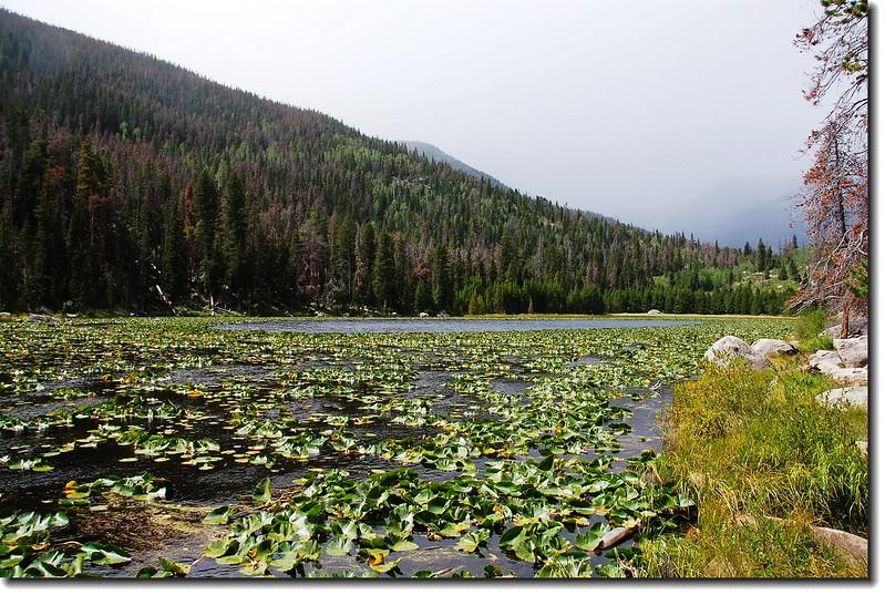 Cub Lake 1.