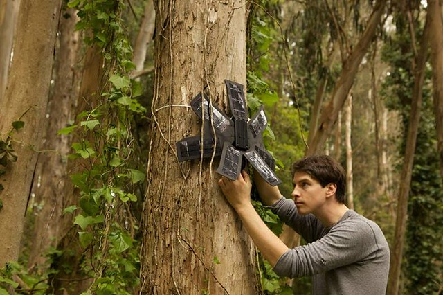 rainforest connection diarioecologia