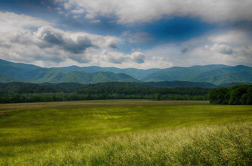 park sky usa mountain mountains field clouds outdoors us day tn cloudy cove tennessee south great grain fair hike east southern national smoky eastern smokies hdr cades