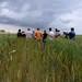 Reportage sur la plate-forme de blés anciens à Fromenteau (Côte d'Or)