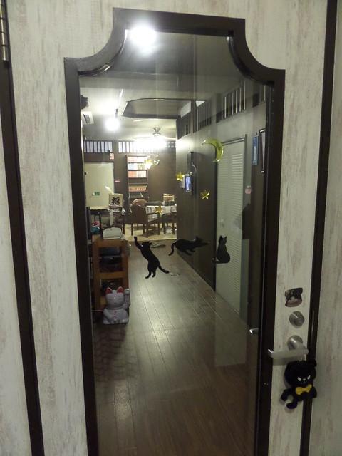 Cat Cafe Nanny