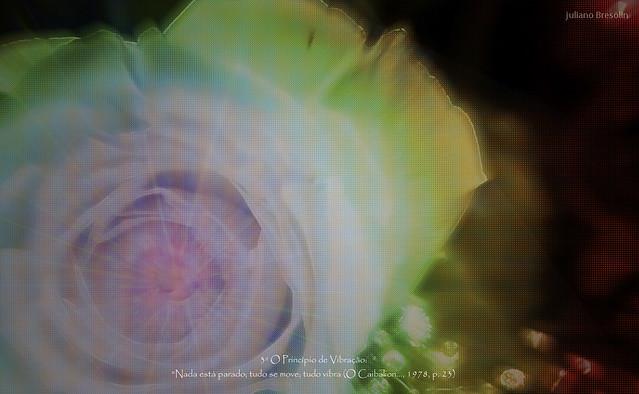 03 Vibração