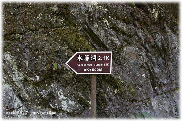 0715中橫白楊步道113