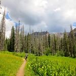 Hiking to Falls Creek Waterfall