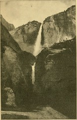 """Image from page 10 of """"Glimpses of our national parks"""" (1920)"""