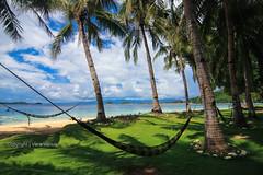 Let's go hammock camping in Banana island