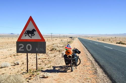 Caution: wild horses (Garub)