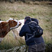 Gimme a kiss....[Cow whisperer Dave Wild in action] by milo42