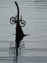 Bicycle in harbour