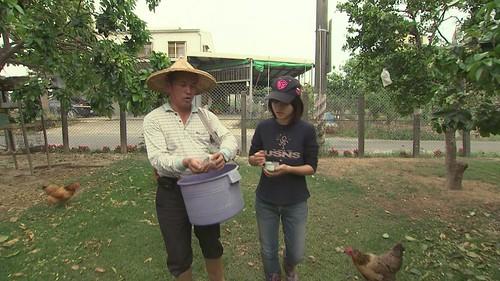 陳純仁接管這座柚子園已經三十多年