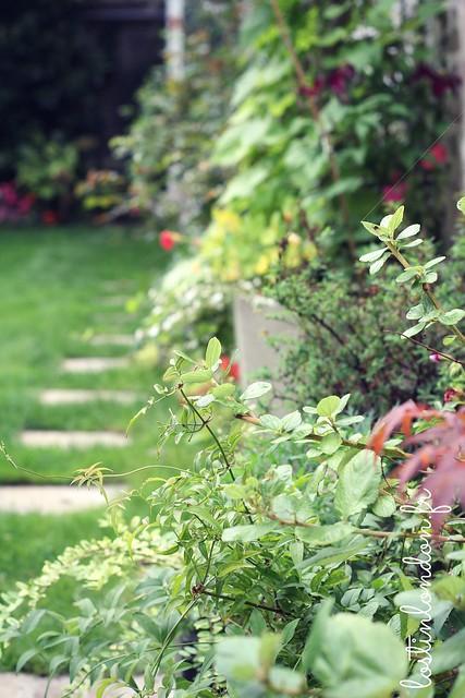 jardin joli