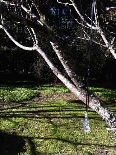 Hoffman's Mill: Guitar Necklace Hanging Off Old Fruit Tree