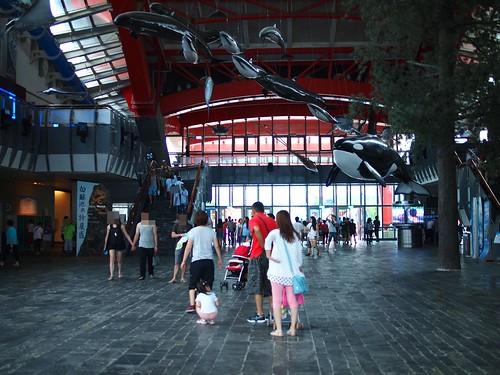 國立海洋生物博物館11