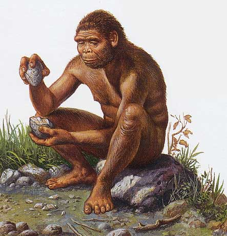 Homo habilis making his earliest primitive tools
