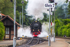 Harz Juni 2014
