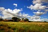 Burton Mere RSPB, Dee Estuary