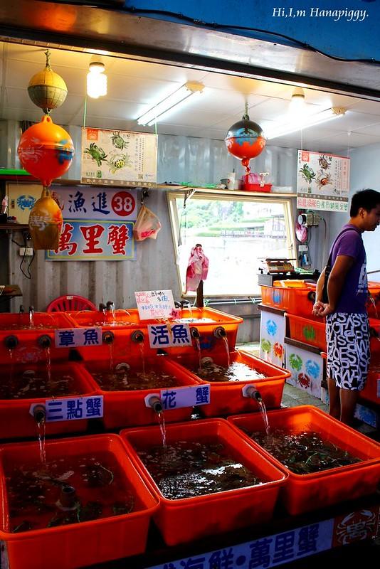 西北萬里蟹 (71)