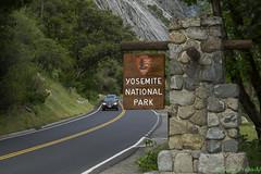 USA: CA, Yosemite